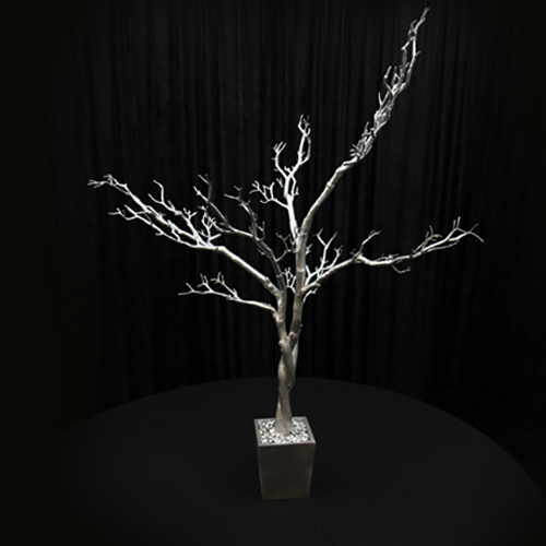4 ft Silver Manzanita Tree Image