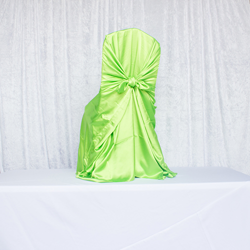 Lime Green Satin Self Tie Image