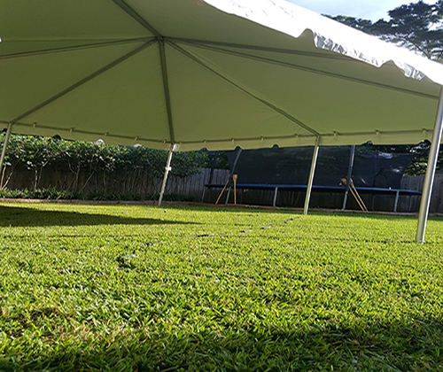 Tent-3 Image