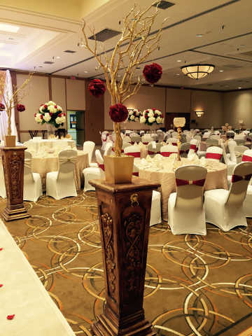 South-Asian-Hilton-Greenspoint-August-2105 (1)